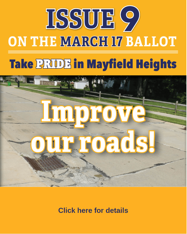 Income Tax Issue Flyer picturing a pothole and which reads Improve our Roads
